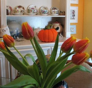 fall flower with a pumpkin sitting behind them, orange tulips and a pumpkin, fall flowers, fall decorating, getting your home ready for fall, fall decor, real estate in austin tx, top austin realtor